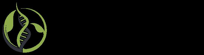 Envilutioin